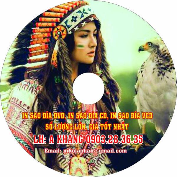in-sao-dia-dvd-ghi-dia-cd-in-sao-dia-vcd-so-luong-lon-492